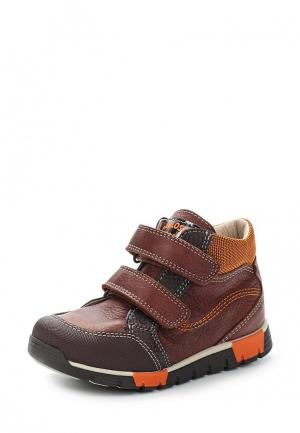 Ботинки Pablosky. Цвет: коричневый