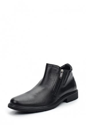 Ботинки классические Salamander. Цвет: черный