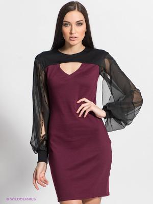 Платье DOCTOR E. Цвет: сливовый, черный