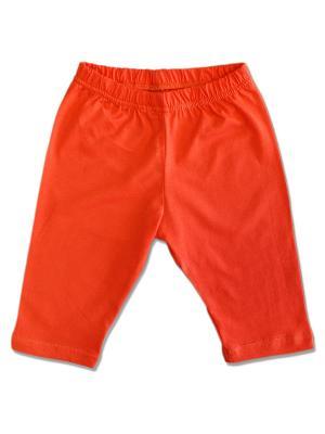 Бриджи LalaBaby. Цвет: оранжевый