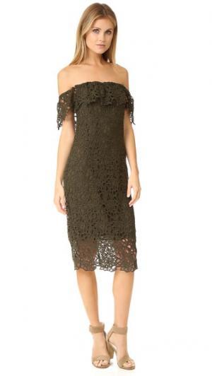Кружевное платье Thalia с открытыми плечами STYLESTALKER. Цвет: оливковый