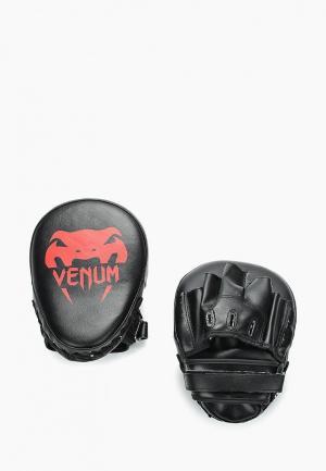 Лапы Venum. Цвет: черный