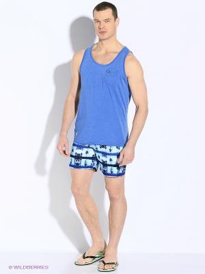 Бордшорты TOM TAILOR. Цвет: синий