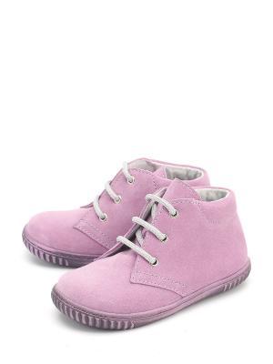 Ботинки PAVLE. Цвет: розовый