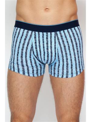 Трусы шорты мужские TORRO. Цвет: голубой, темно-синий