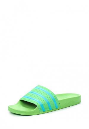 Сланцы adidas Originals. Цвет: зеленый