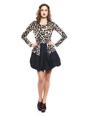 Платье TOPSANDTOPS. Цвет: черный, коричневый