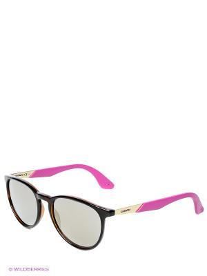 Очки CARRERA. Цвет: коричневый, фиолетовый