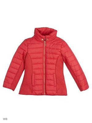 Куртки Senso kids. Цвет: бордовый