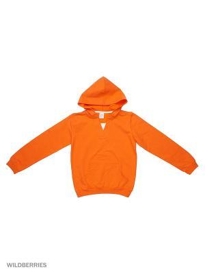 Свитшот K&R BABY. Цвет: оранжевый