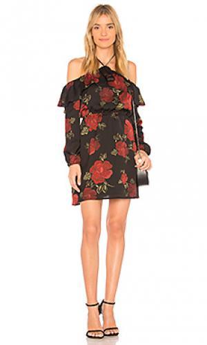 Платье с прорезями на плечах boden cupcakes and cashmere. Цвет: черный