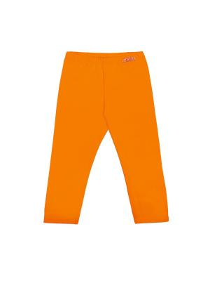 Бриджи ALIERA. Цвет: оранжевый