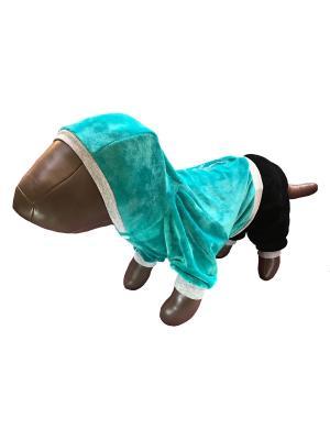 Спортивный костюм с капюшоном Pet's Fashion. Цвет: бирюзовый