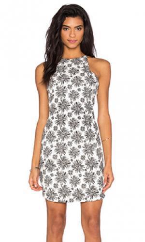 Мини платье Lucca Couture. Цвет: black & white