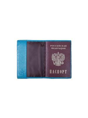 Обложка для паспорта Jane's Story. Цвет: голубой