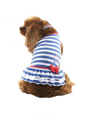 Платье Nautica, размер L. TRIOL. Цвет: белый, голубой