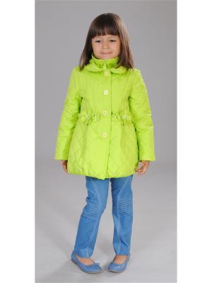 Куртка Fleur de Vie. Цвет: салатовый