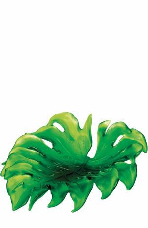 Блюдо Monstera для центра стола Daum. Цвет: зеленый
