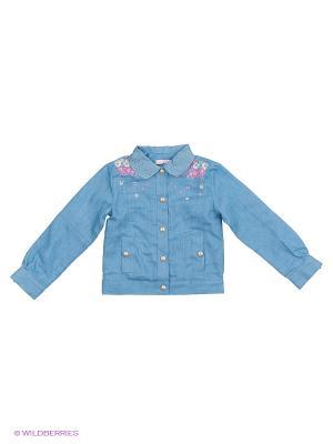 Куртка CHOUPETTE. Цвет: синий