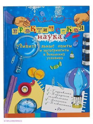 Практическая наука: удивительные опыты и эксперименты в домашних условиях Феникс-Премьер. Цвет: синий