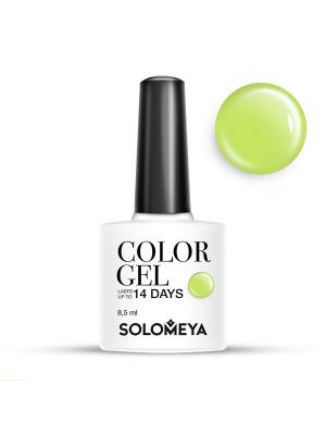 Гель-лак Color Gel Тон Pistachio SCG166/Фисташка SOLOMEYA. Цвет: салатовый