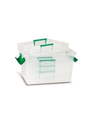 Контейнер с 4 лотками 24x17x14 см пластик Primo. Цвет: зеленый, прозрачный