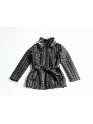 Куртка Proto. Цвет: черный