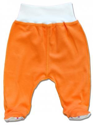 Ползунки LalaBaby. Цвет: оранжевый