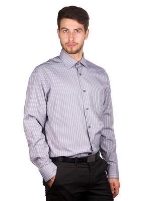 Рубашка GREG. Цвет: белый, серый, фиолетовый