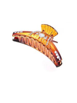 Заколка-краб Migura. Цвет: коричневый