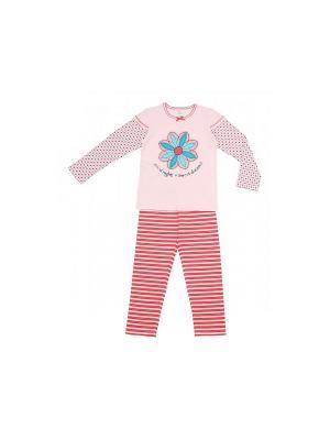 Пижама Модамини. Цвет: бледно-розовый, коралловый
