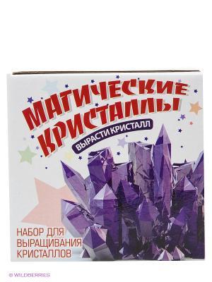 Набор Магические кристаллы SPL-Technik. Цвет: красный