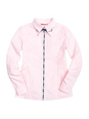 Рубашка PELICAN. Цвет: розовый