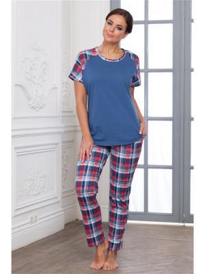 Комплект одежды CLEO. Цвет: синий,красный