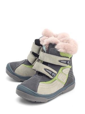 Ботинки DITOP. Цвет: серый
