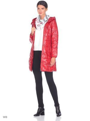 Пальто CATTAIL WILLOW. Цвет: красный
