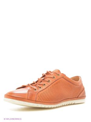 Туфли Dino Ricci. Цвет: оранжевый