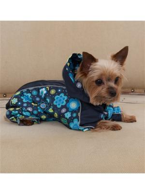Дождевик для собак (унисекс) LUCKY DOG. Цвет: синий