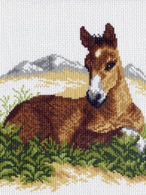 Рисунок на канве Жеребёнок Матренин Посад. Цвет: коричневый