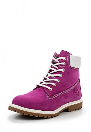 Ботинки Dino Ricci. Цвет: фуксия