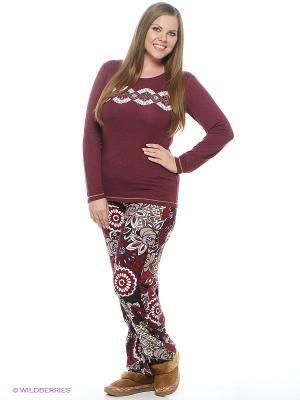 Комплект одежды CATHERINE'S. Цвет: бордовый