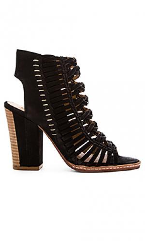 Обувь на каблуке amina Dolce Vita. Цвет: черный