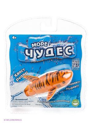 Робо-акула акробат Тигра Море Чудес. Цвет: синий