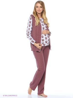 Комплект-тройка для беременных (свитшот + жилет брюки) Hunny Mammy. Цвет: коричневый, белый