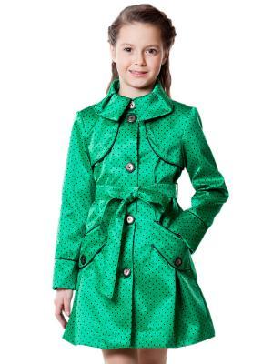 Тренчкот Alisa Line. Цвет: зеленый