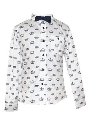 Рубашка Карамелли. Цвет: темно-синий, белый