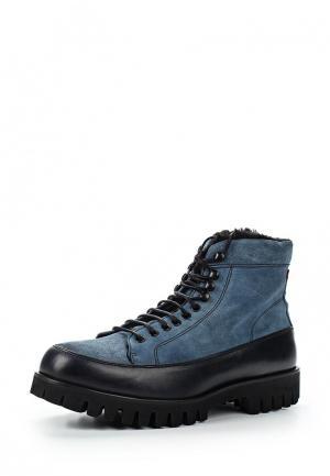 Ботинки BLT Baltarini. Цвет: синий