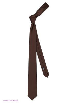 Галстук Alex DANDY. Цвет: коричневый