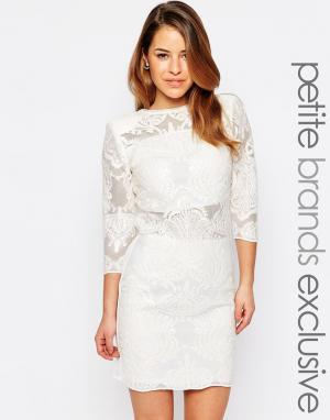 John Zack Petite Сетчатое платье мини с пайетками глубоким вырезом на спинке. Цвет: белый