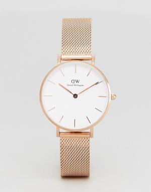 Daniel Wellington Золотисто-розовые часы с браслетом DW00100163. Цвет: золотой
